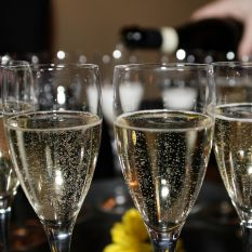 Three delicious bottles of bubbly for the festive season