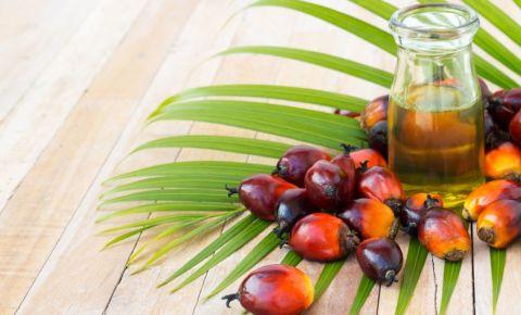 palm-oiljpg