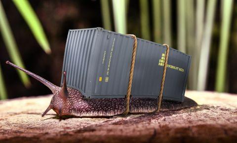 snail-container-home-pixabaycom