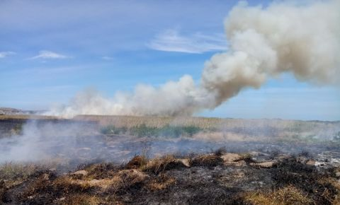 noordhoek-fire-sanparksjpeg