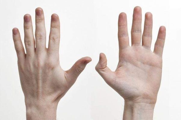 how much do you know about left handers