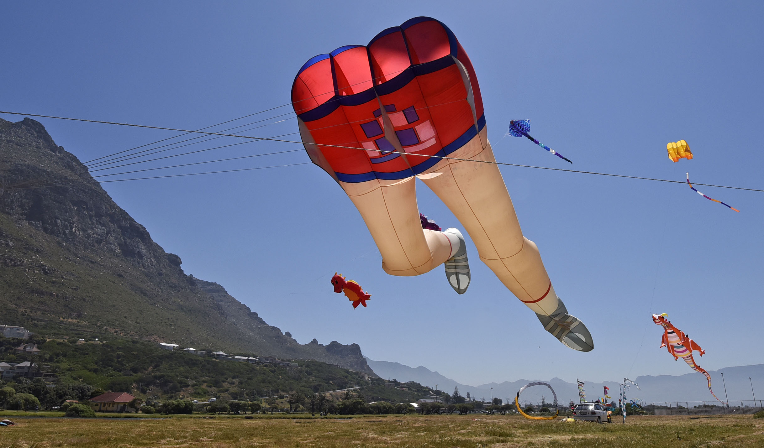 25th Cape Town International Kite Festival
