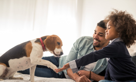 Dad and daughter and family dog pet 123rflifestyle 123rf