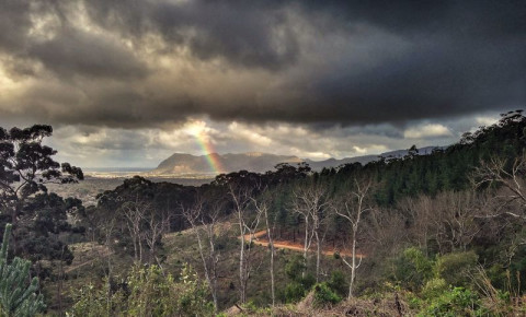 Cecilia Forest in Cape Town with rainbow over Muizenberg