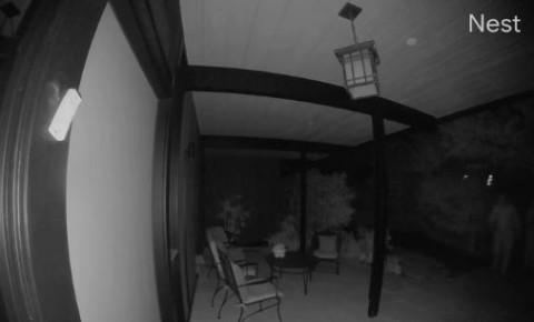 security-footagejpg
