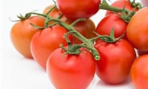 tomatoesjpg
