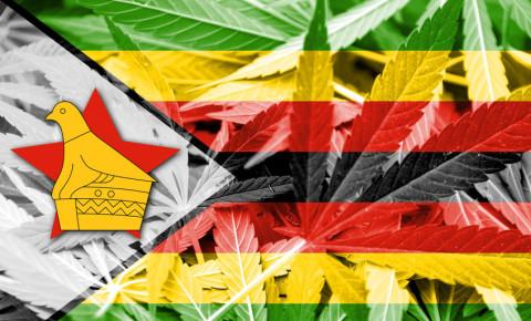Zimbabwe flag dagga cannabis marijuana 123rfbusiness 123rf
