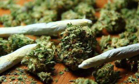 weed-dagga-joint-cannabisjpg