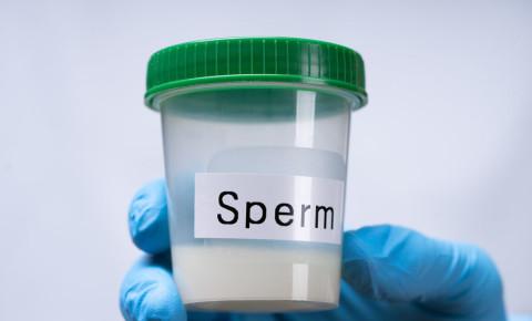 Sperm donor 123rf