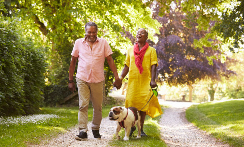 Retired older senior Black couple Walking Bulldog 123rf 123rfbusiness