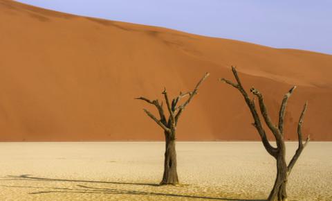 Namibian desert  Namibia 123rf