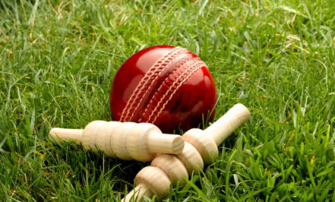 Cricket-ball-sport-123rfjpg