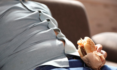 Overweight fat obese burger 123rf