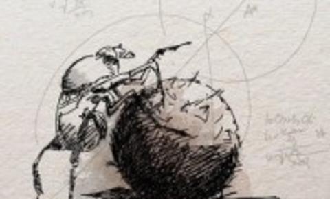 dung-beetle-cropjpg