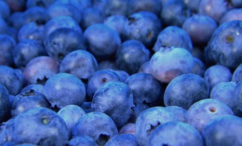 blueberriesjpg