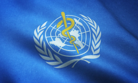 World Health Organsation flag logo WHO 123rf