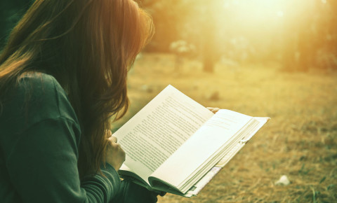 Woman reading book in park literature books 123rflifestyle 123rf