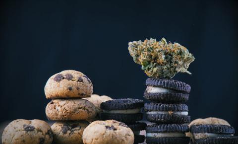 Dagga cannabis marijuana edibles space cakes cookies 123rf
