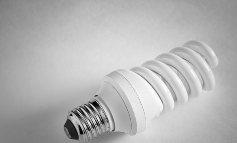 light bulb energy electricity lighting  energy-saving lamp 123rf