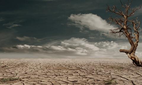 climate-change-droughtjpeg