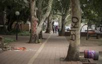 Protesting students spray painted names of various African leaders on trees at the University of the Free State's Bloemfontein campus over what they call a lack of transformation at the university. Picture: Reinart Toerien/EWN.