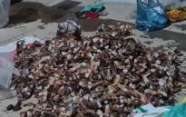 Moorreesburg SAPS Crime Prevention Unit arrested two suspects aged 54 and 55 under the Living Marine Resources Act charges. Crayfish tails worth R450,9000 were seized. Picture: @SAPoliceService/Twitter