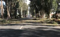 Remnants of the protest action are visible in Old Mamre Road; broken branches and some burnt debris. Picture: Monique Mortlock/EWN.