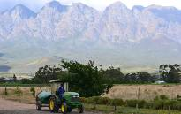 FILE: A farm worker driving a tractor on a farm in the Western Cape. Picture: EWN.