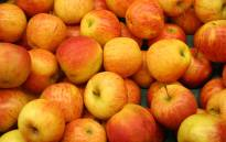 Apples. Picture: Free Images