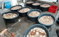 An illegal abalone processing plant. Picture: @SAPoliceService/Twitter