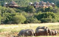 Picture: Addo Elephant National Park.
