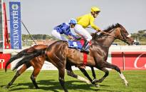'Do It Again' is back this year to defend his  L'Ormarins Queen's Plate title with Richard Fourie, his regular big race partner. Picture: Supplied