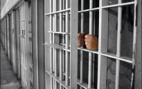 Picture: Supplied