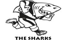 Picture: Sharks website.