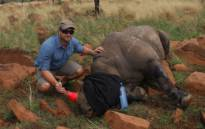 Once former cricketer Mark Boucher had recovered and realised he couldn't play cricket anymore, he devoted his life to another passion - rhino conservation - by founding the Boucher Legacy. Picture: boucherlegacy.co.za