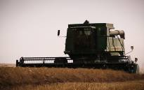 A combine harvester harvests the 2015 wheat fields in the Swartland district. This year has been plagued by severe water shortages. Picture: Anthony Molyneaux/EWN