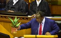 Bitter Aloe: Finance Minister Tito Mboweni says the country needs to withstand the elements. Picture: Twitter/@ParliamentofRSA