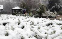 FILE: A woman walks in the Botanic Garden as snow falls in the New South Wales central west town of Orange early on 16 July 2015. Picture: AFP