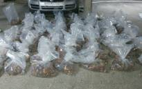 Police arrested two suspects for the possession of abalone worth R7 million in Century City, Milnerton in Cape Town on 21 October 2020. Picture: @SAPoliceService/Twitter