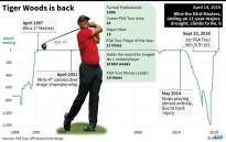 Chart showing Tiger Woods' rankings since 1994. Picture: AFP