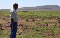 FILE: A farmer inspects his land, in the Free State. Picture: Christa Eybers/EWN.
