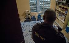 FILE: A members of Cape Town's Gang and Drug Taskforce uses a sniffer dog to search for guns and drugs in a house. Picture: Thomas Holder/EWN.