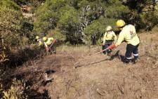 A Working on Fire firefighting team creates a fire break as part of fighting a fire at the Kylemore area near the Jonkershoek Nature Reserve on 28 February 2021. Picture: @wo_fire/Twitter