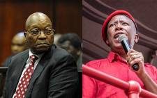 Jacob Zuma and Julius Malema. Picture: EWN