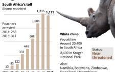 SA's rhino poaching toll