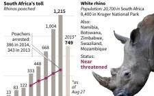 Graphic charting the number of rhino poached in South Africa. Source: AFP.