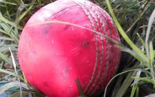 FILE: This match sees the use of pink balls, which have replaced the famous red ball. Picture: Wikimedia Commons