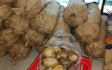 The Hawks together with Crime Intelligence and officials from the Department of Environmental Forestry and Fisheries on 16 November 2020 uncovered an illegal abalone facility at Kewridge in Cape Town and arrested two suspects for operating an illegal processing facility. Picture: @SAPoliceService/Twitter