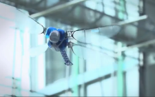 FILE: The company showed off the 'Smart Bird' and 'BionicOpter' at this year's IFAC. Picture: Supplied.