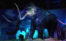 45 Life-size Ice Age mammals on display at the Sandton Convention Centre. Picture: Louise McAuliffe/EWN
